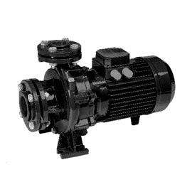 Насос FN4 100-125-185C Espa
