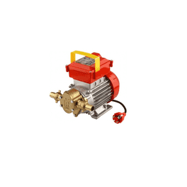 Насос BE-G 20 HP 0,6 Rover Pompe