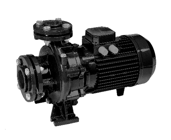 Насос FN 80-100-185C Espa